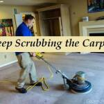 Deep Scrubbing Carpet