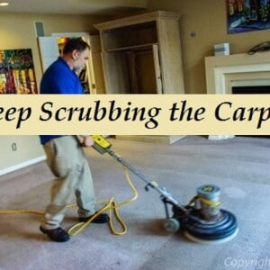 "scrubbing the carpet to lift pile and break up Stains. "" a must for carpet cleaning"""