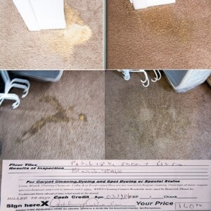 Bleach stain repairs before after