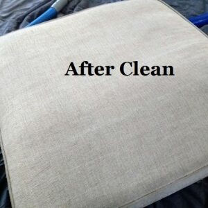 cushion after clean