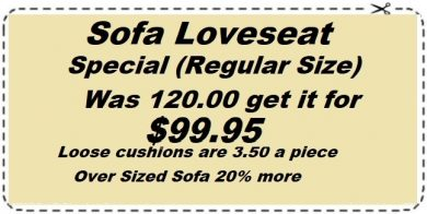 Sofa Loveseat Cleaning Special