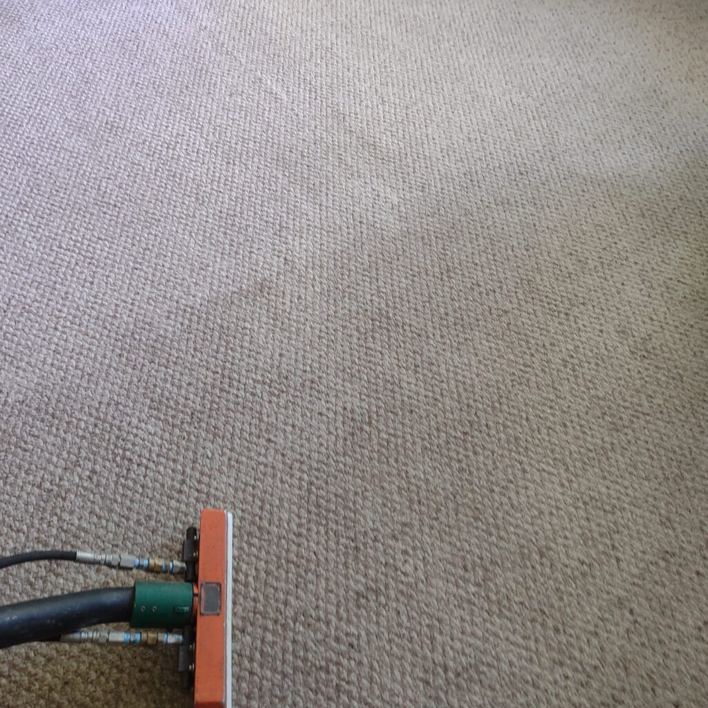 Carpet cleaning Indiana